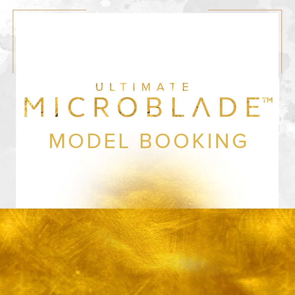 Microblade Model