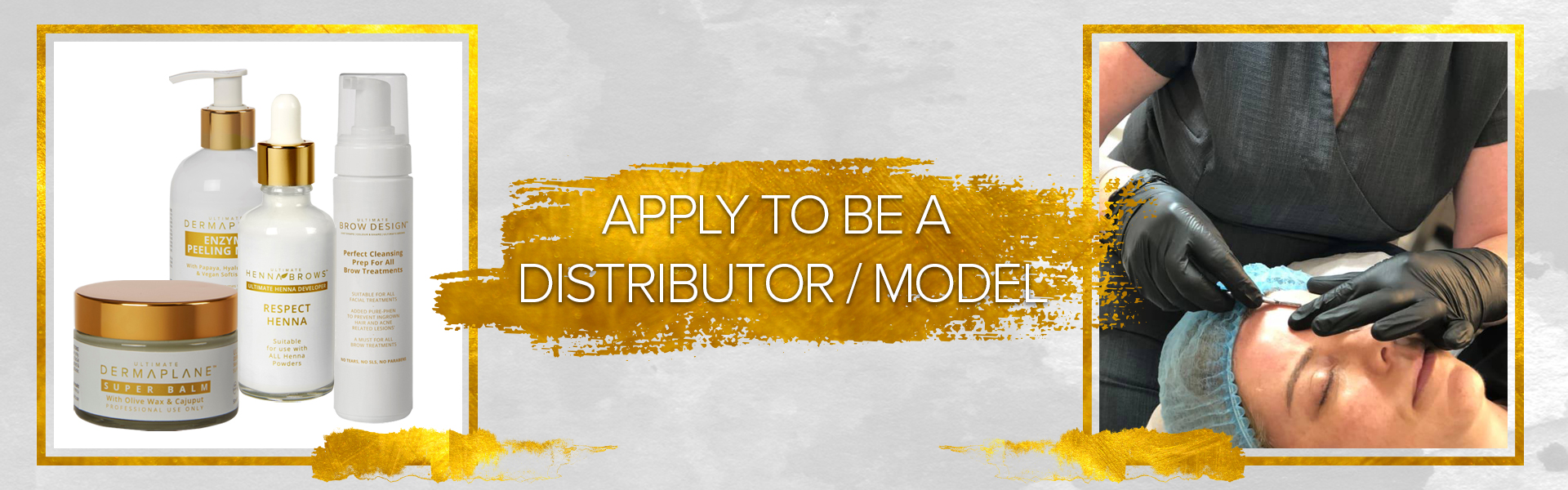 BE A DISTRIBUTOR / MODEL